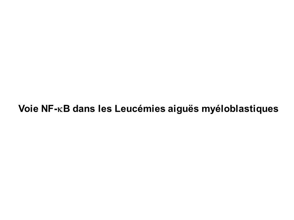 Voie NF-kB dans les Leucémies aiguës myéloblastiques