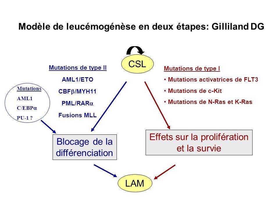 Modèle de leucémogénèse en deux étapes: Gilliland DG