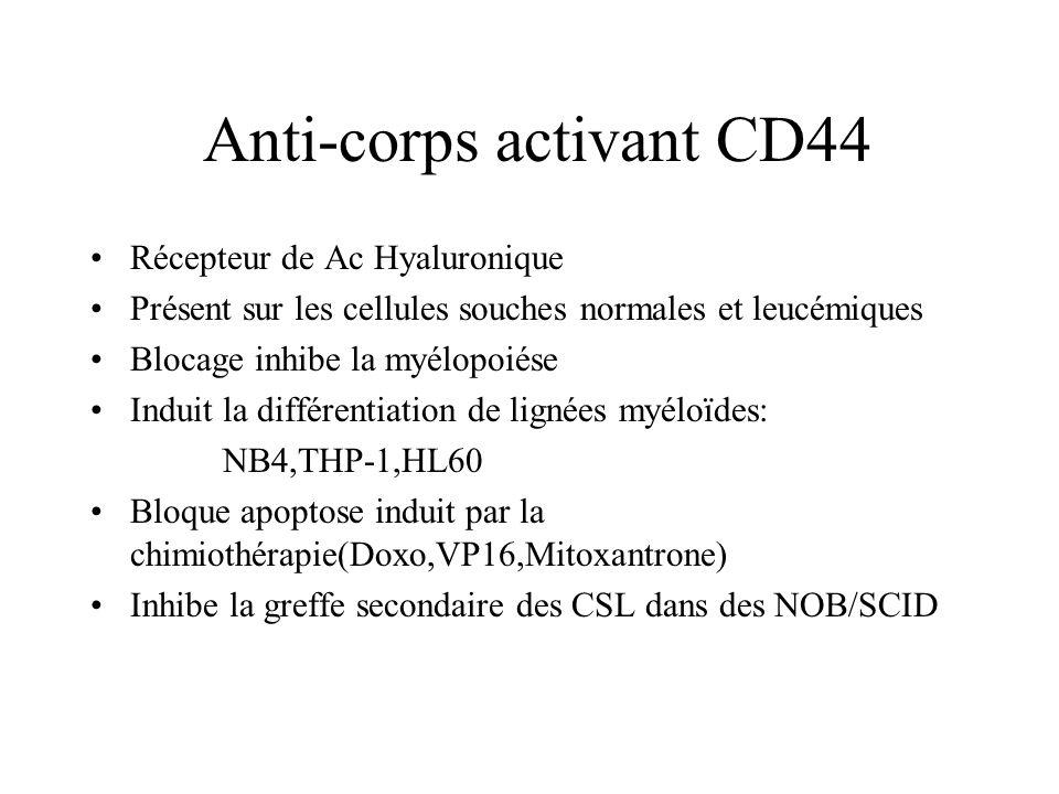 Anti-corps activant CD44