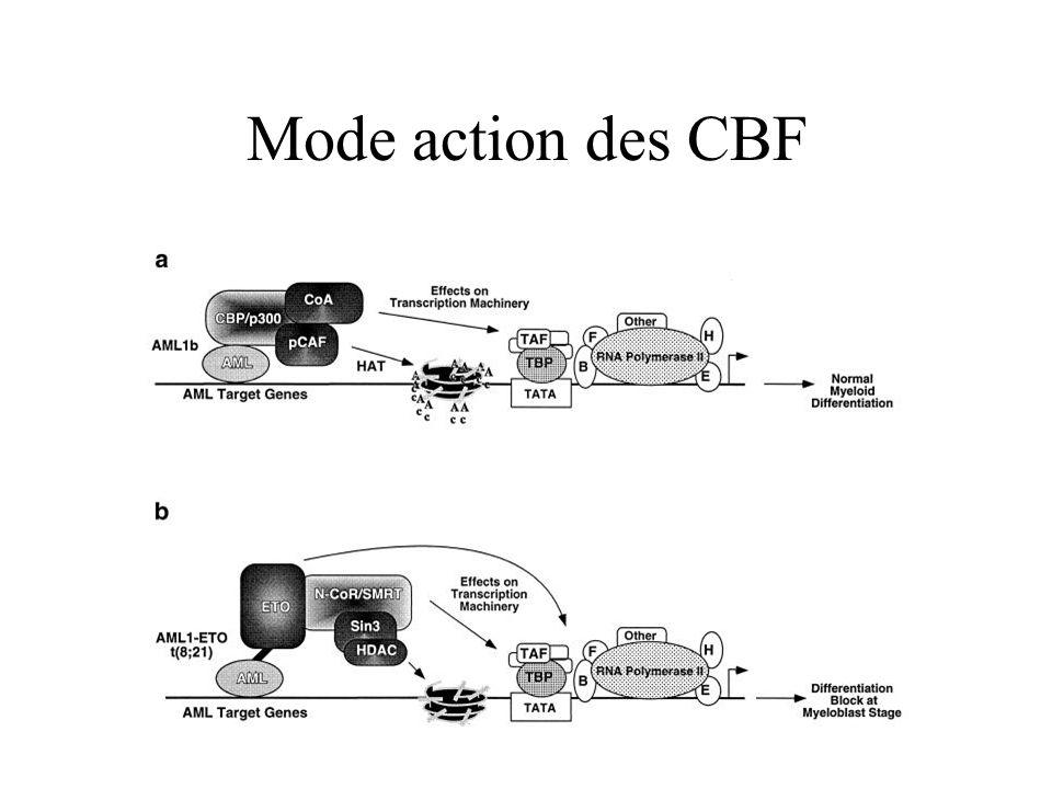 Mode action des CBF