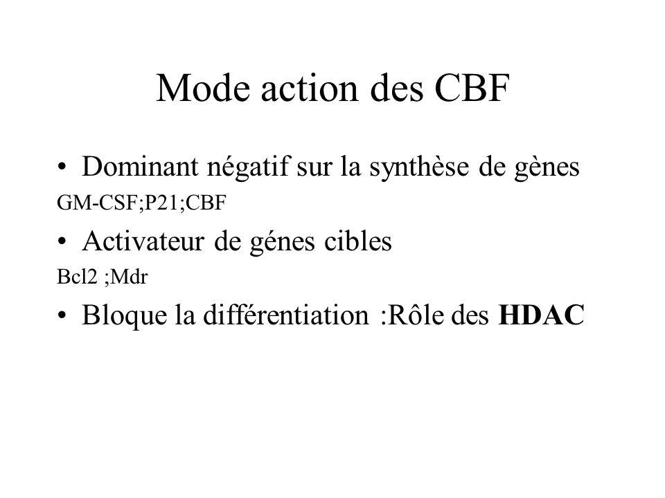 Mode action des CBF Dominant négatif sur la synthèse de gènes