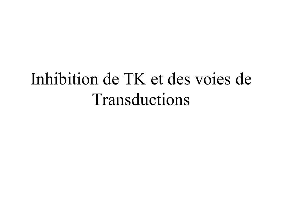 Inhibition de TK et des voies de Transductions