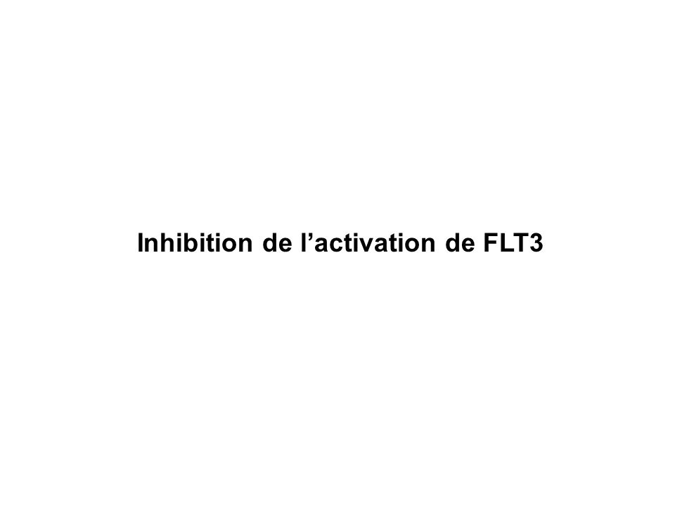 Inhibition de l'activation de FLT3
