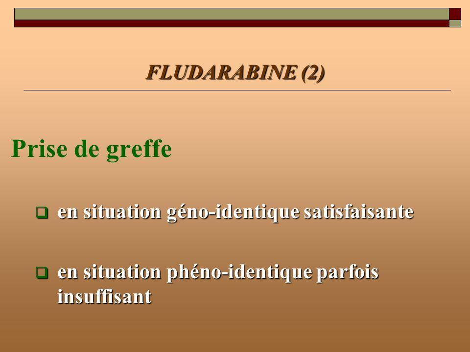 Prise de greffe FLUDARABINE (2)
