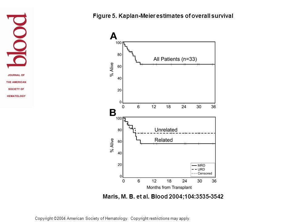 Figure 5. Kaplan-Meier estimates of overall survival
