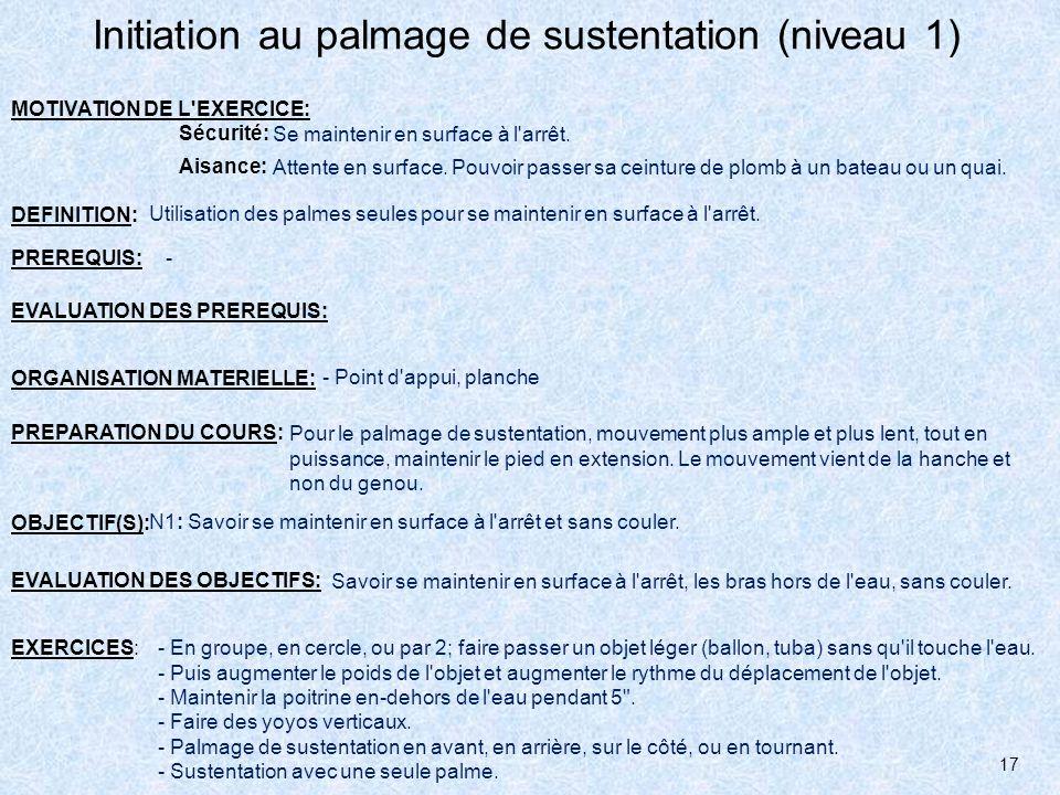 Initiation au palmage de sustentation (niveau 1)
