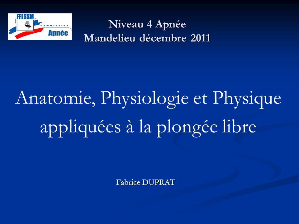 Niveau 4 Apnée Mandelieu décembre 2011