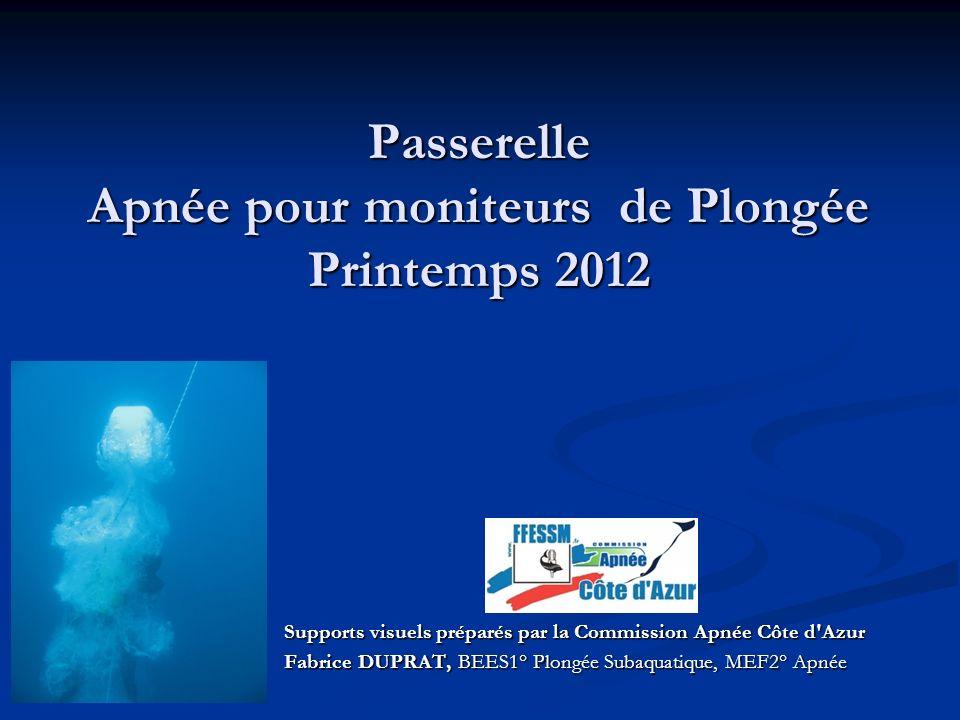 Passerelle Apnée pour moniteurs de Plongée Printemps 2012