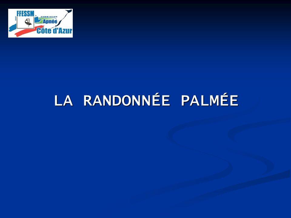 LA RANDONNÉE PALMÉE