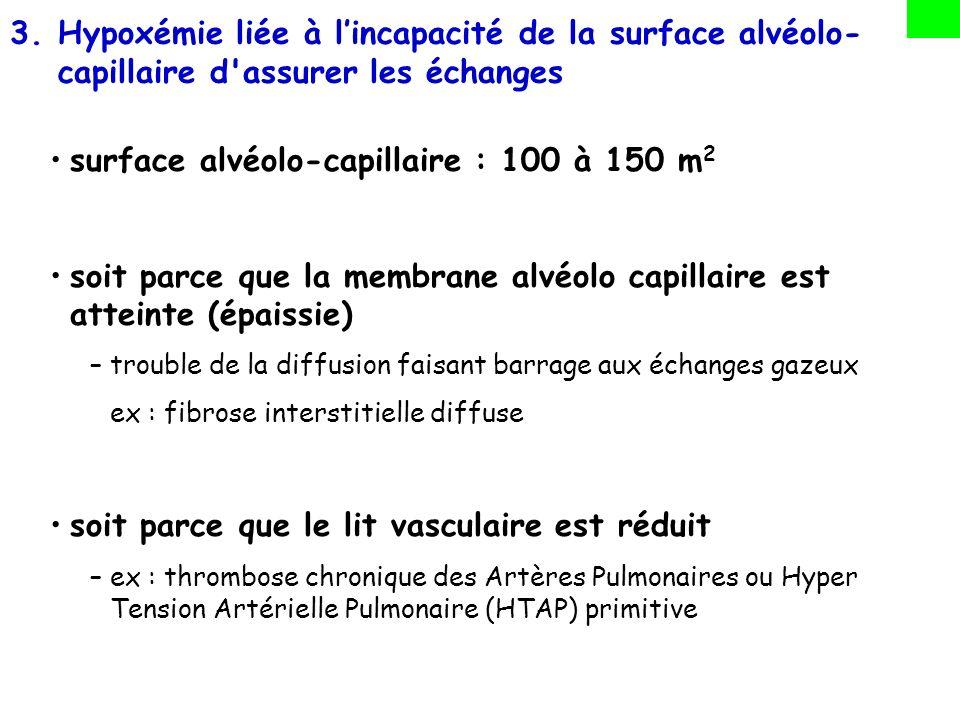surface alvéolo-capillaire : 100 à 150 m2