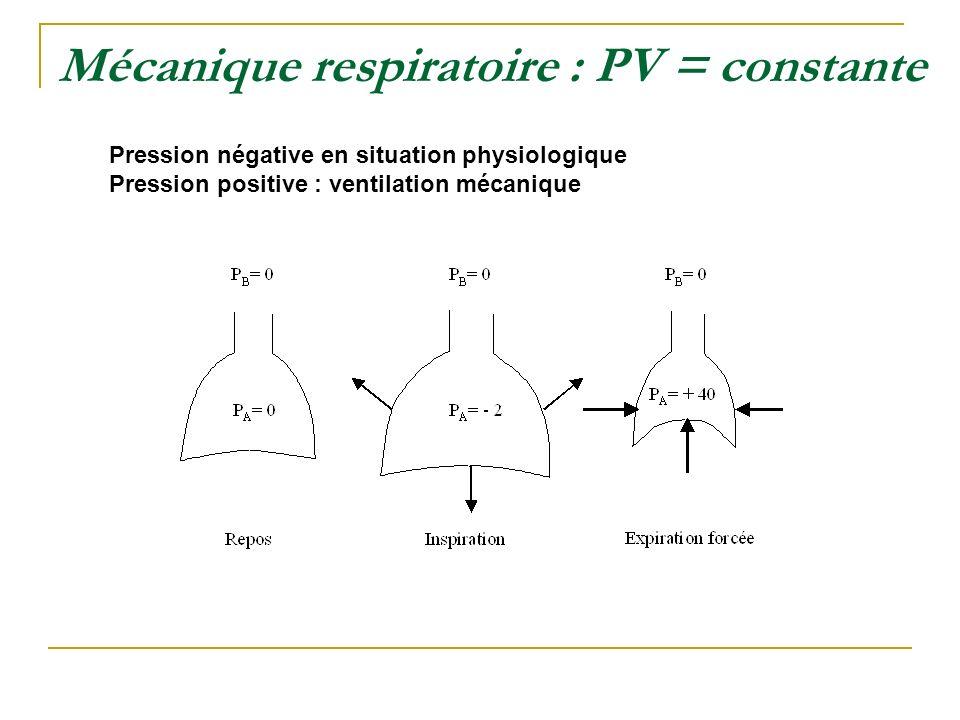 Mécanique respiratoire : PV = constante