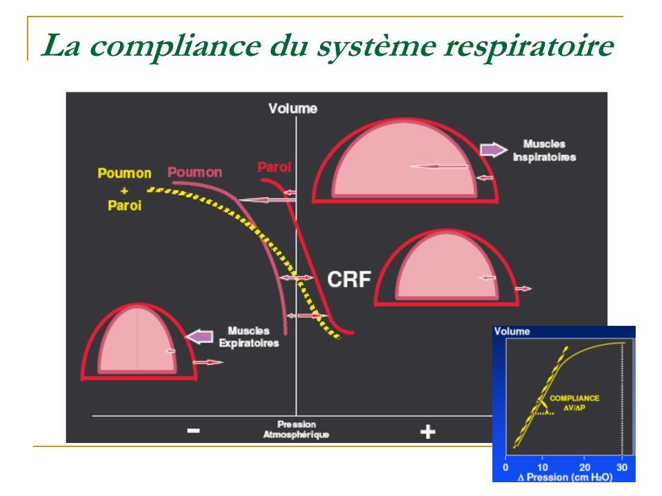 La compliance du système respiratoire