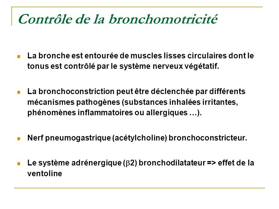 Contrôle de la bronchomotricité
