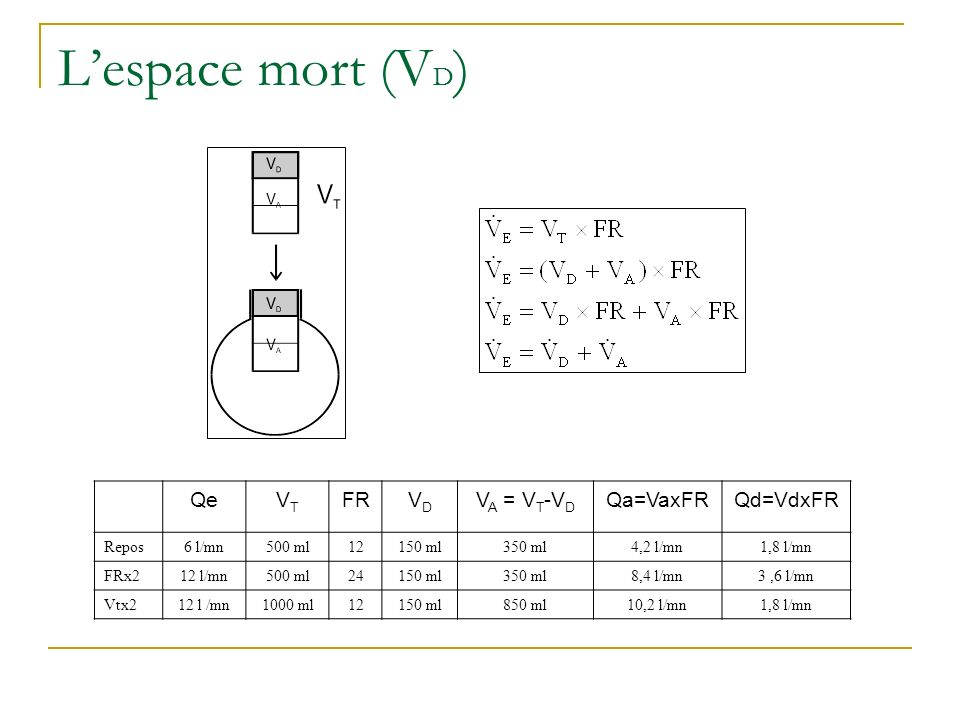 L'espace mort (VD) Qe VT FR VD VA = VT-VD Qa=VaxFR Qd=VdxFR Repos