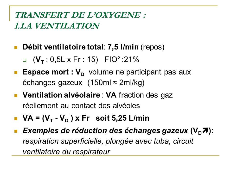 TRANSFERT DE L'OXYGENE : 1.LA VENTILATION