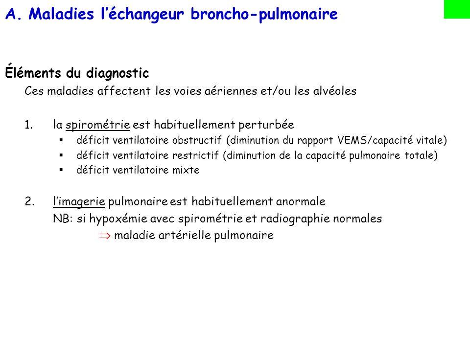 Maladies l'échangeur broncho-pulmonaire