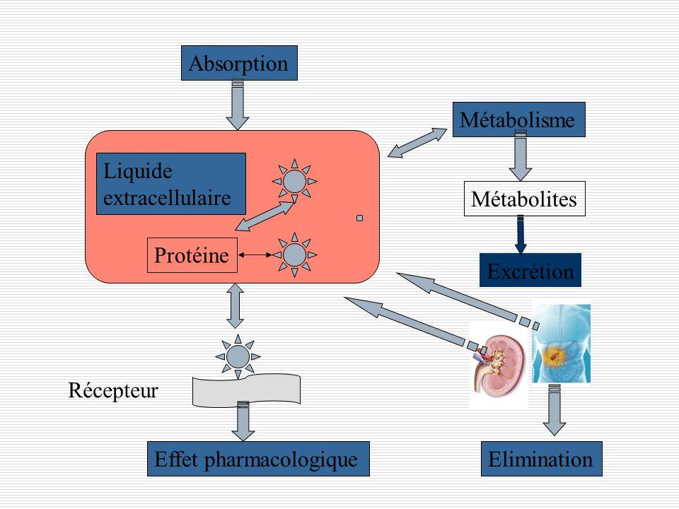 Absorption Métabolisme. Liquide. extracellulaire. Métabolites. Protéine. Excrétion. Récepteur.