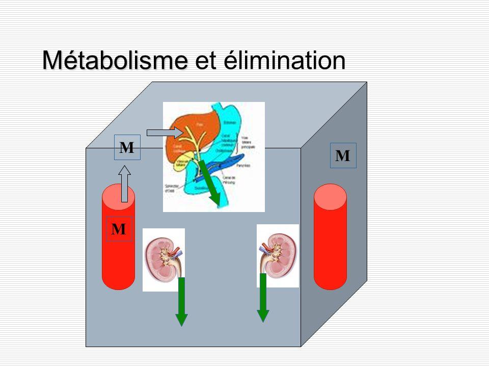 Métabolisme et élimination