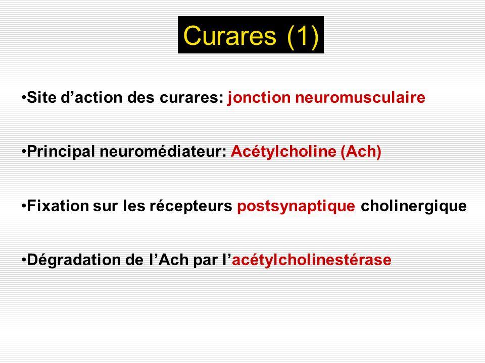 Curares (1) Site d'action des curares: jonction neuromusculaire