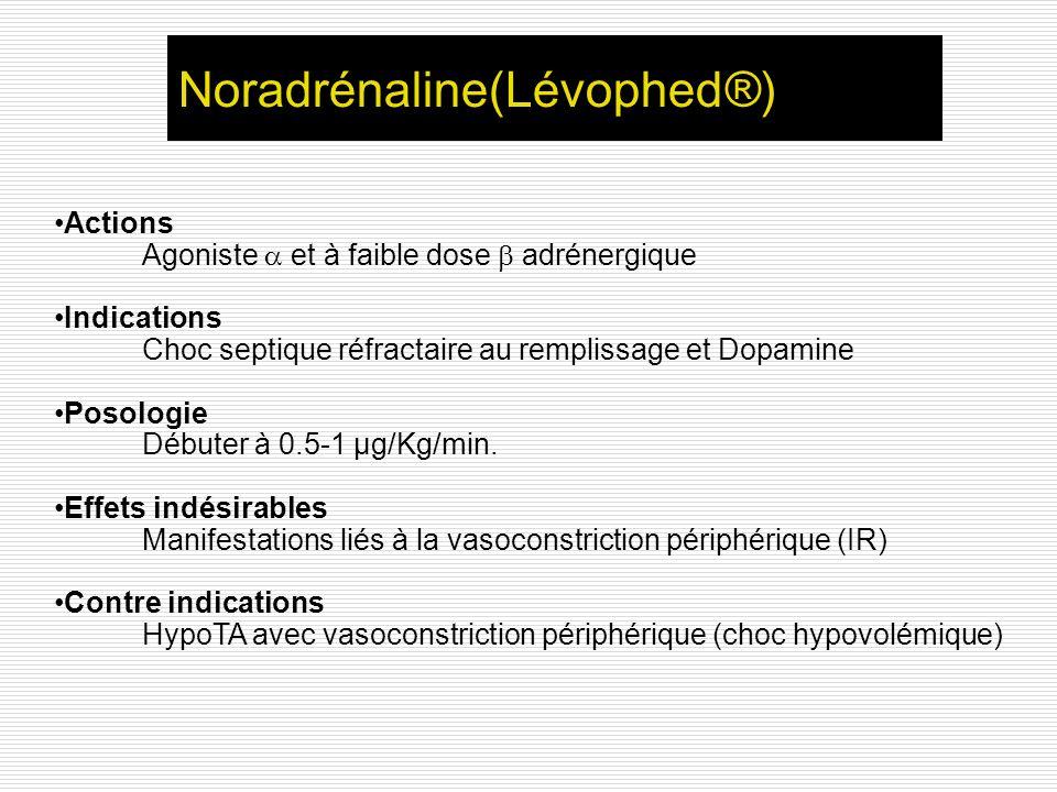 Noradrénaline(Lévophed®)