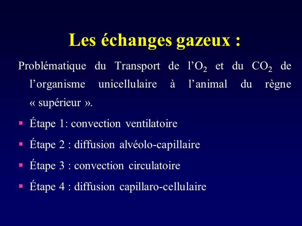 Les échanges gazeux : Problématique du Transport de l'O2 et du CO2 de l'organisme unicellulaire à l'animal du règne « supérieur ».