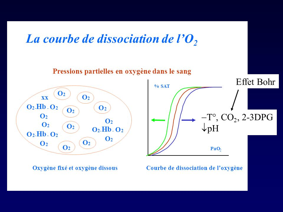 La courbe de dissociation de l'O2