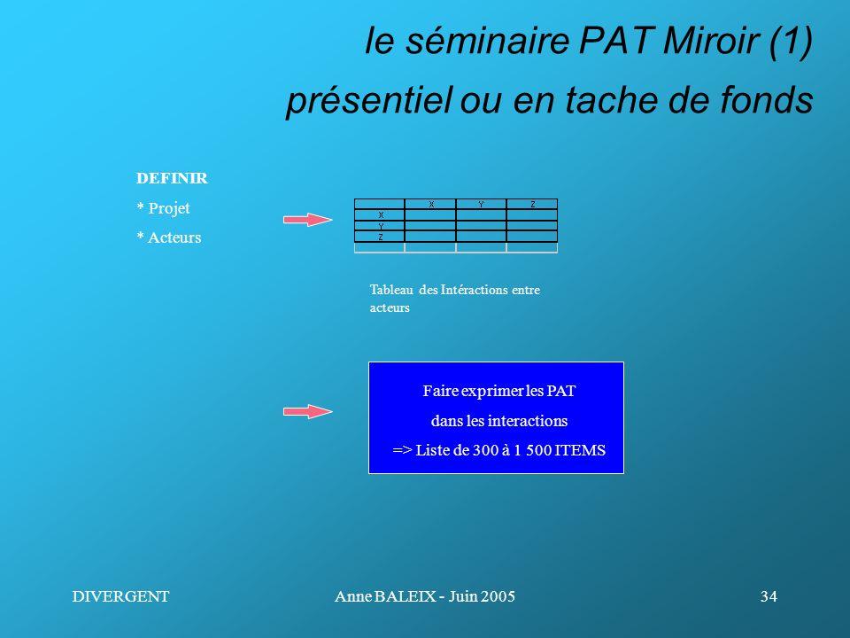 le séminaire PAT Miroir (1) présentiel ou en tache de fonds