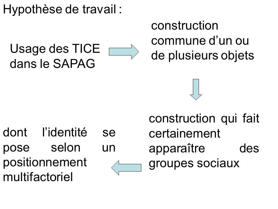 Hypothèse de travail : construction commune d'un ou de plusieurs objets. Usage des TICE dans le SAPAG.