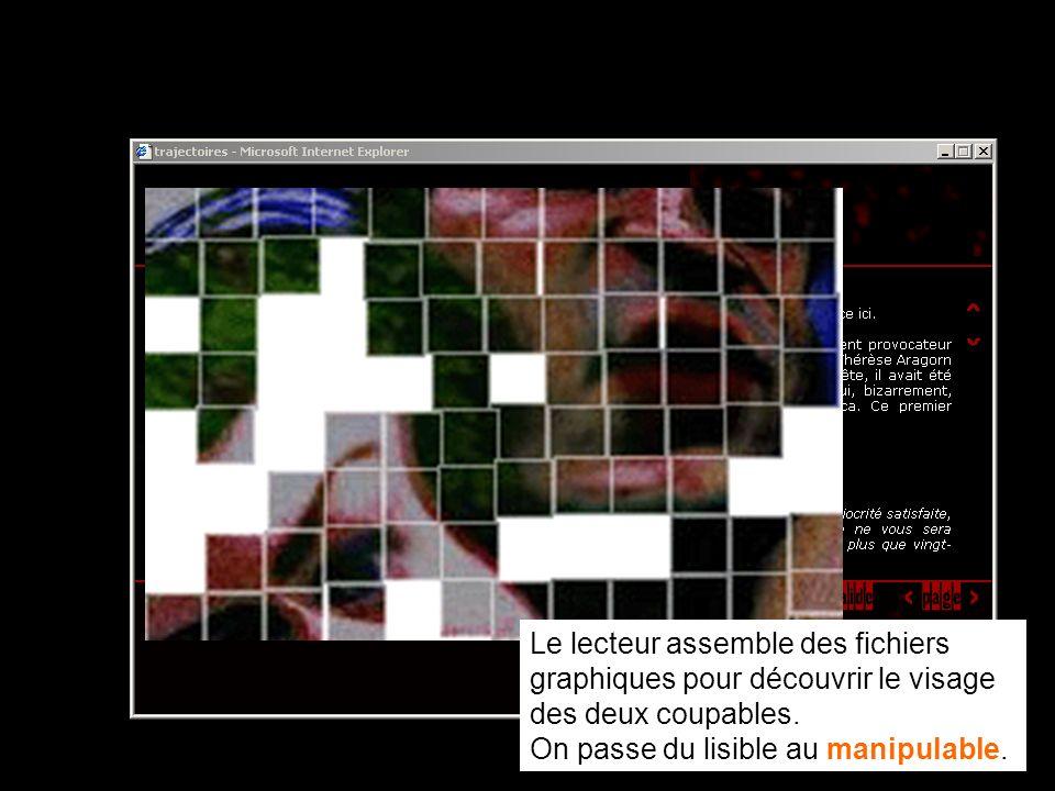 Il obtient ainsi à chaque téléchargement une image qui est en fait un fragment d'une image plus grande : s'il a la curiosité d'assembler ces différents fichiers grâce à un logiciel graphique (le nom de chaque image donne une indication sur son emplacement dans le puzzle), il découvre alors le visage des deux coupables de l'histoire.