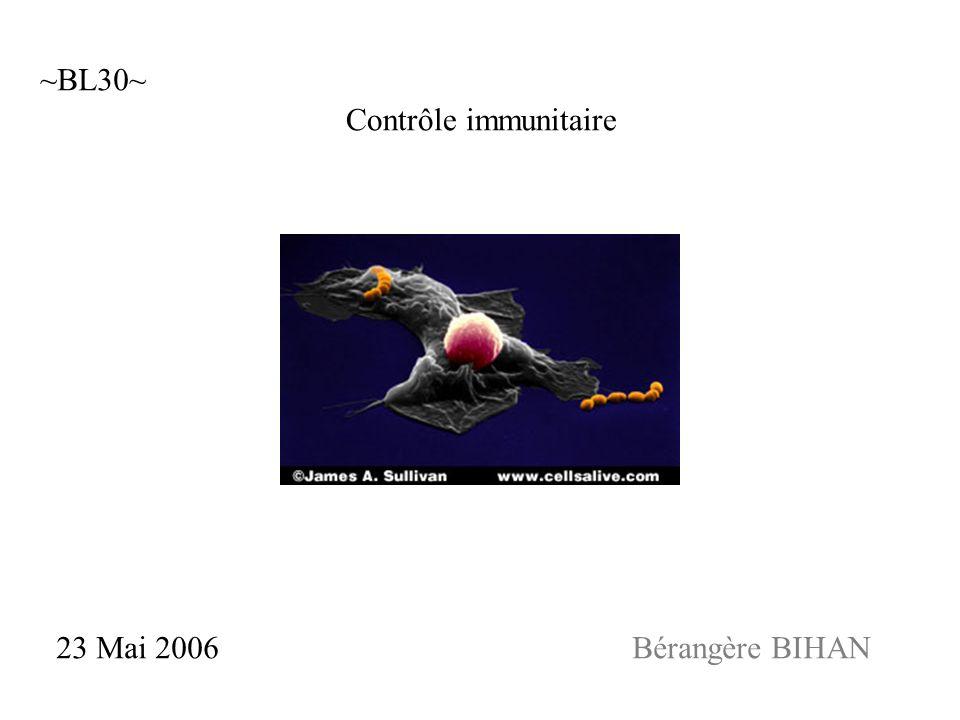 ~BL30~ Contrôle immunitaire 23 Mai 2006 Bérangère BIHAN