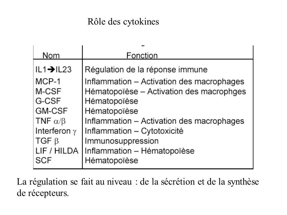 Rôle des cytokines La régulation se fait au niveau : de la sécrétion et de la synthèse.