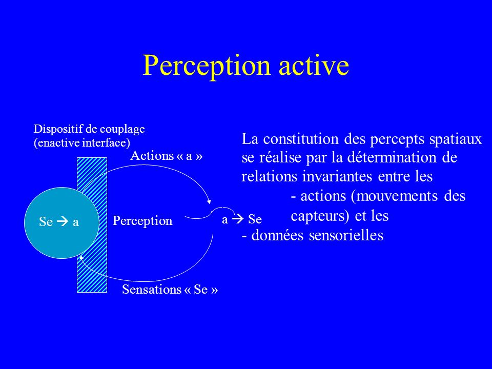 Perception active Actions « a » Sensations « Se » Perception. Dispositif de couplage. (enactive interface)