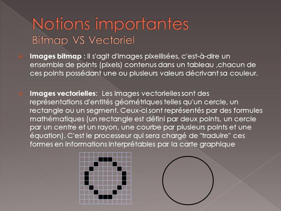 Notions importantes Bitmap VS Vectoriel