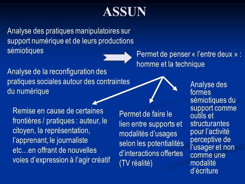 ASSUN Analyse des pratiques manipulatoires sur support numérique et de leurs productions sémiotiques.