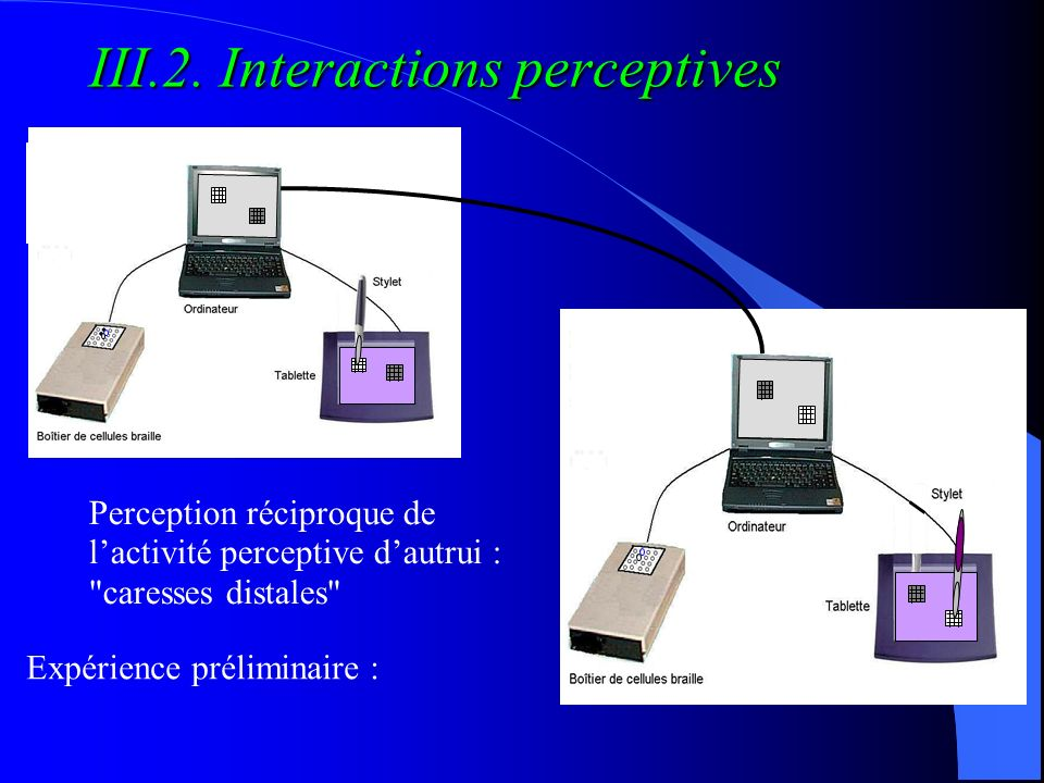 III.2. Interactions perceptives
