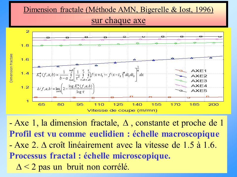 Dimension fractale (Méthode AMN, Bigerelle & Iost, 1996)