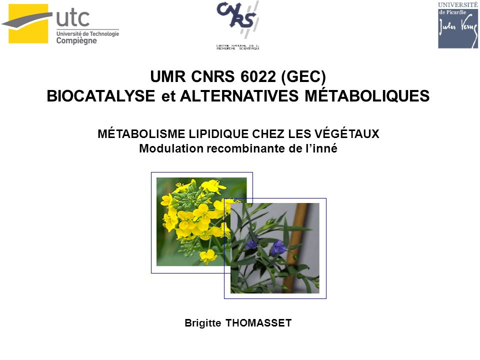 UMR CNRS 6022 (GEC) BIOCATALYSE et ALTERNATIVES MÉTABOLIQUES