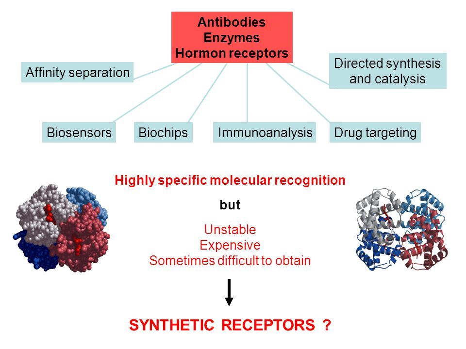 SYNTHETIC RECEPTORS Antibodies Enzymes Hormon receptors