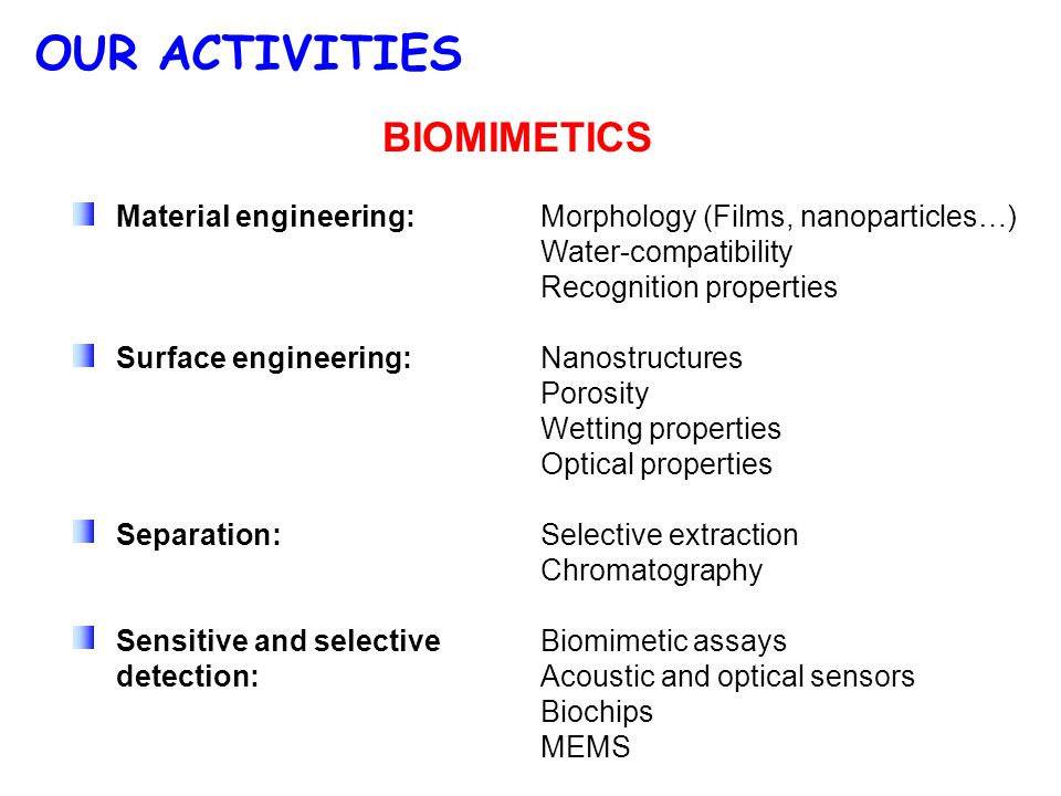 OUR ACTIVITIES BIOMIMETICS