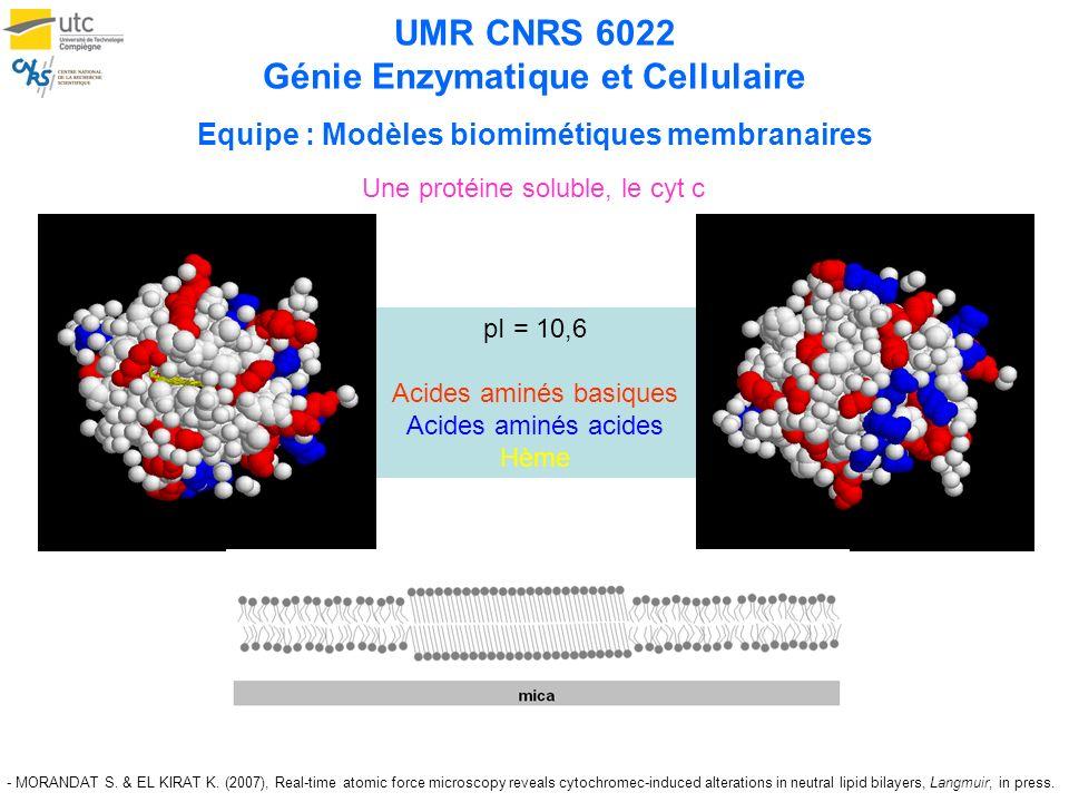 UMR CNRS 6022 Génie Enzymatique et Cellulaire