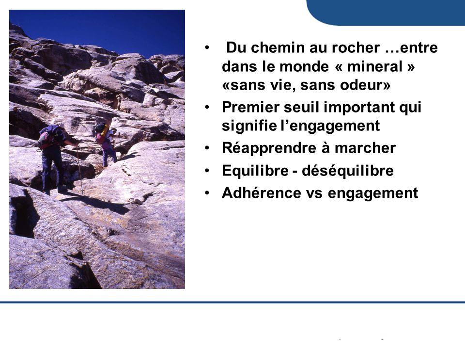 Du chemin au rocher …entre dans le monde « mineral » «sans vie, sans odeur»
