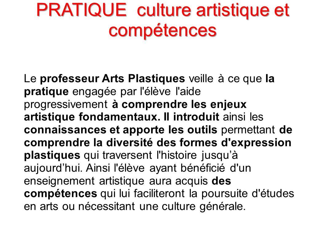 PRATIQUE culture artistique et compétences