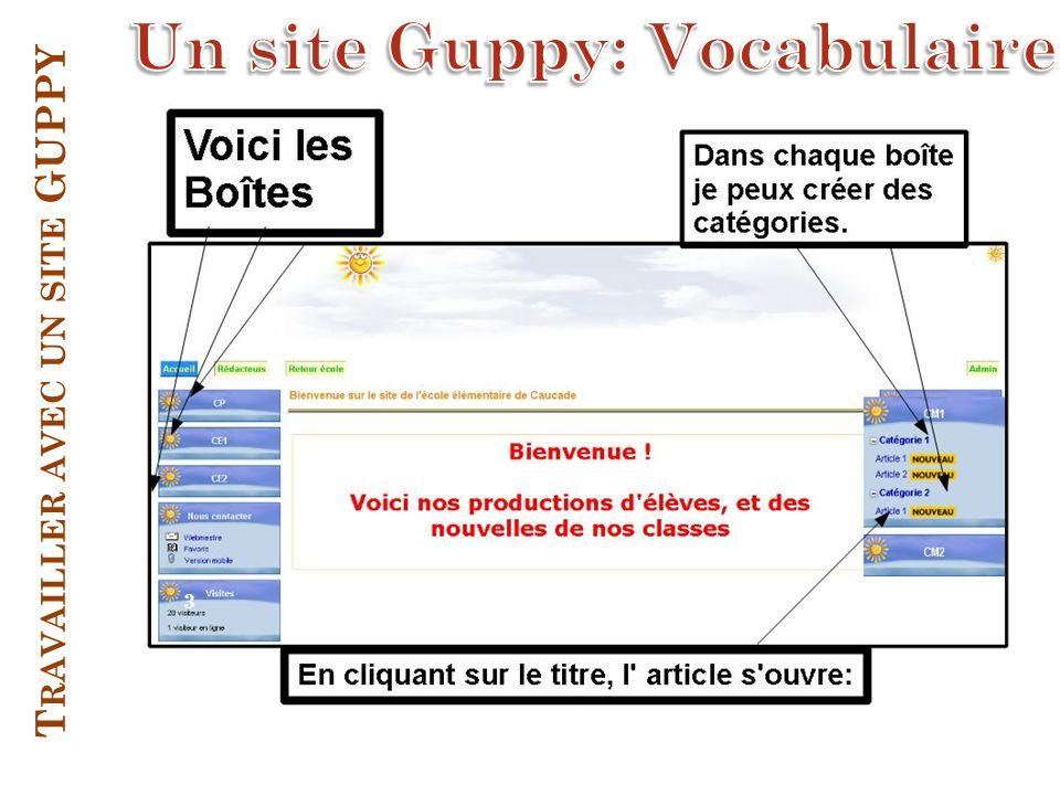 Travailler avec un site GUPPY