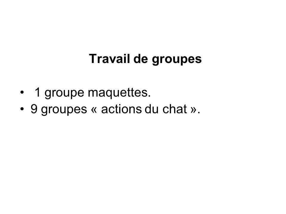 Travail de groupes 1 groupe maquettes. 9 groupes « actions du chat ».