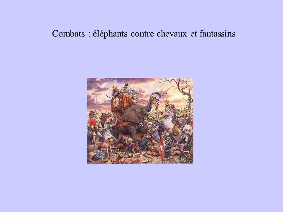 Combats : éléphants contre chevaux et fantassins