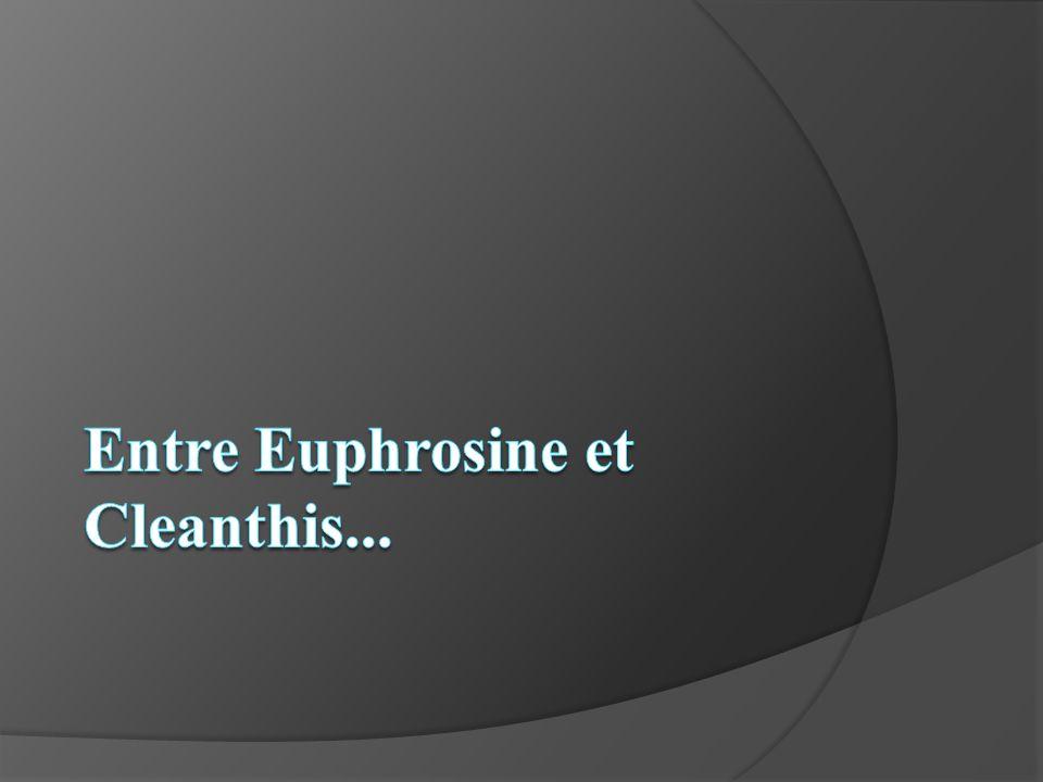 Entre Euphrosine et Cleanthis...