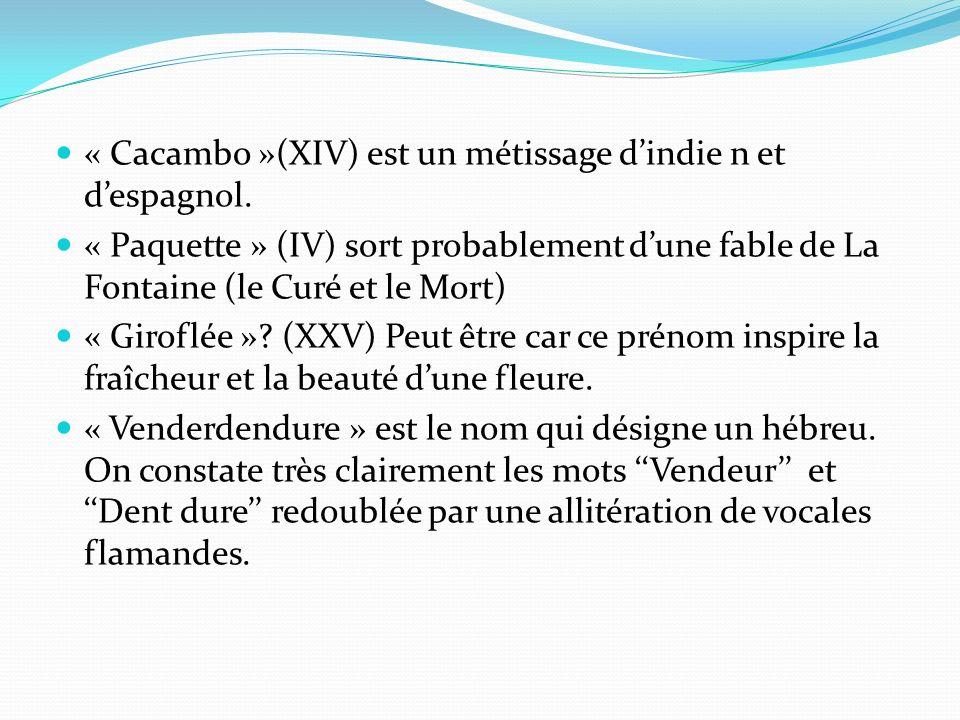 « Cacambo »(XIV) est un métissage d'indie n et d'espagnol.