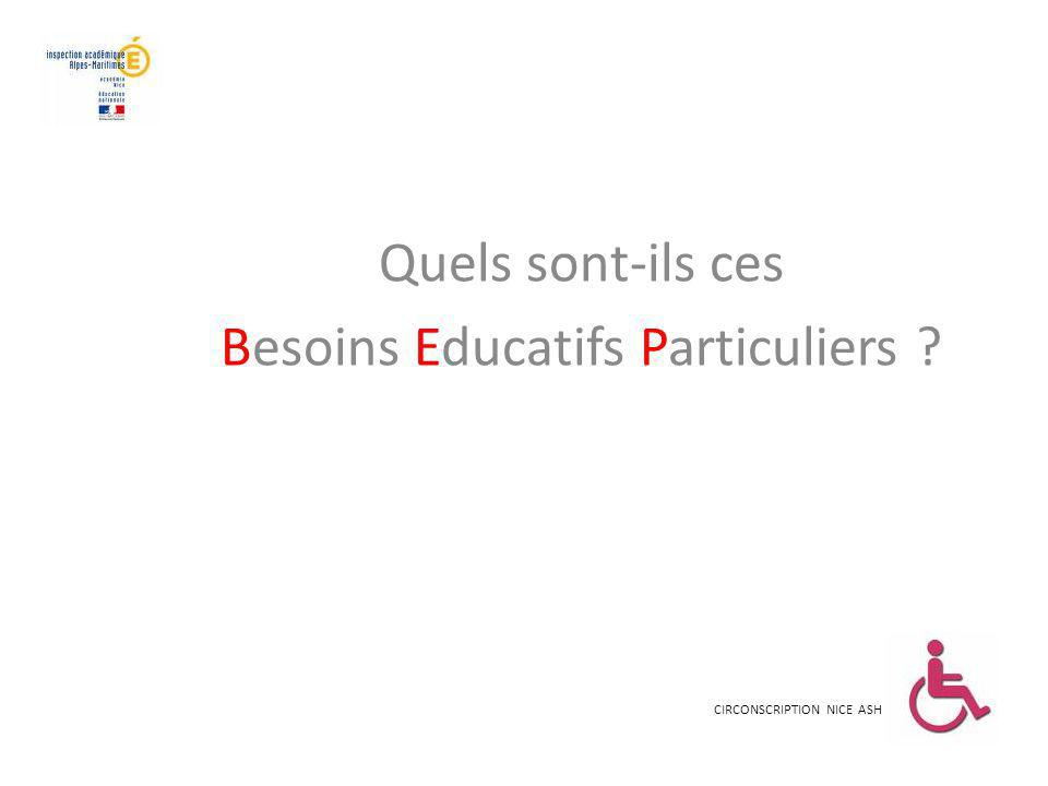 Besoins Educatifs Particuliers