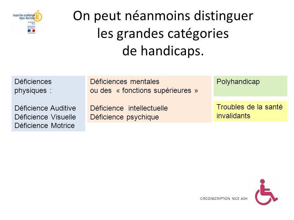 On peut néanmoins distinguer les grandes catégories de handicaps.