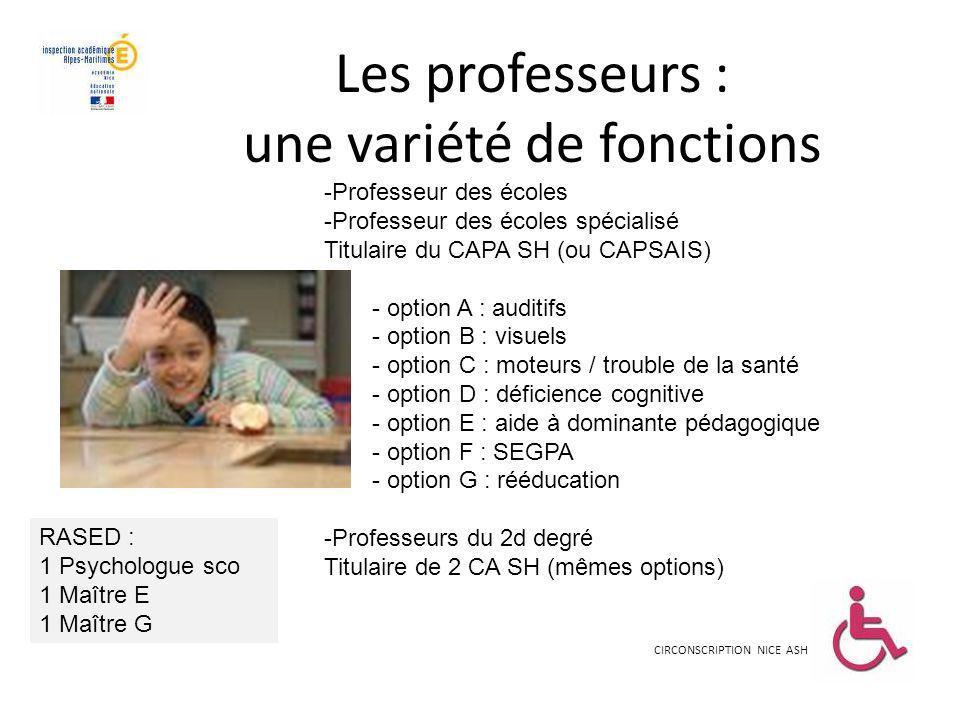 Les professeurs : une variété de fonctions